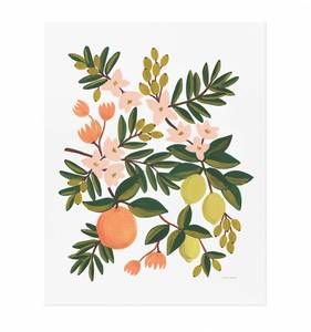 [Rifle Paper Co.] Citrus Floral 8 x 10""